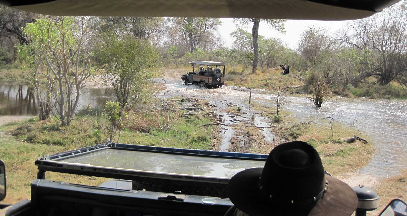On game drive with Masson Safaris in Moremi Game Reserve